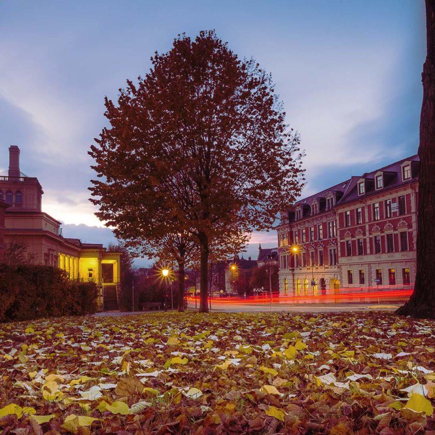 Herbst am Töpferberg