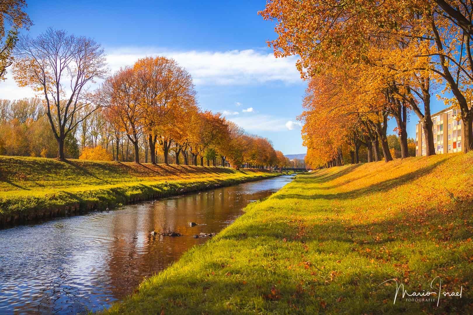 Herbst an der Mandau